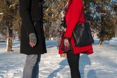 Giovani coppie che stanno all'aperto nell'inverno Fotografia Stock Libera da Diritti