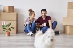 Giovani coppie con le tazze di caffè che si rilassano in loro nuovo appartamento immagine stock libera da diritti