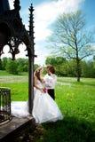 Giovani coppie di nozze nell'amore Immagini Stock Libere da Diritti