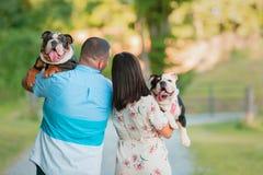 Giovani coppie felici che camminano e che portano i bulldog inglesi immagini stock libere da diritti