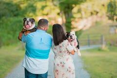 Giovani coppie felici che camminano e che portano i bulldog inglesi fotografia stock