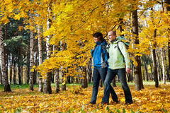 Giovani coppie felici con gli zainhi nella sosta Fotografia Stock