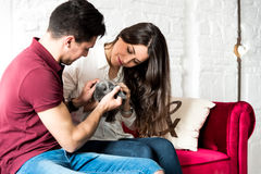 Giovani coppie felici rilassate a casa con un animale domestico del coniglietto immagine stock