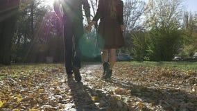 Giovani coppie nell'amore che cammina in natura video d archivio