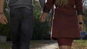 Giovani coppie nell'amore che cammina in natura archivi video