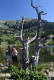 Giovani coppie su una riva del lago della montagna Fotografia Stock Libera da Diritti