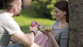 Giovani coppie vegetariane che mangiano insalata e che bevono seduta del frullato al parco stock footage