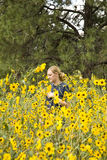 giovani della donna dei girasoli del campo Fotografia Stock