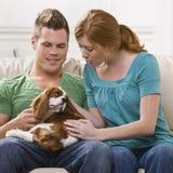 giovani della holding del cane delle coppie Fotografia Stock