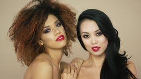 Giovani donne attraenti che posano nello studio stock footage