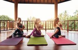 Giovani donne in buona salute che praticano yoga Fotografie Stock