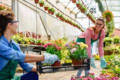 Giovani donne che lavorano nel bello giardino floreale variopinto Fotografie Stock Libere da Diritti