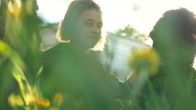 Giovani donne con un cane che si siede vicino ad un albero nel parco contro la costruzione alla luce solare video d archivio