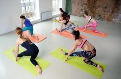 Giovani donne del gruppo che allungano e yoga di pratiche Immagini Stock Libere da Diritti