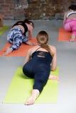 Giovani donne del gruppo che allungano e yoga di pratiche Fotografie Stock Libere da Diritti