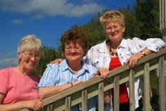 Giovani donne sorridenti   Fotografia Stock Libera da Diritti