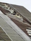 Giovani gattini selvaggi timidi inesperti sul tetto di vecchio granaio rustico Una coppia i piccoli gatti senza tetto pietosi Fotografia Stock