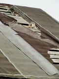 Giovani gattini selvaggi timidi inesperti sul tetto di vecchio granaio rustico Una coppia i piccoli gatti senza tetto pietosi Immagini Stock Libere da Diritti
