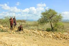 Giovani guerrieri di Maasai fotografia stock libera da diritti