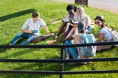 Giovani libri di lettura multietnici degli studenti mentre riposando sull'erba in parco Fotografie Stock Libere da Diritti