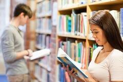 Giovani libri di studio degli adulti Fotografie Stock