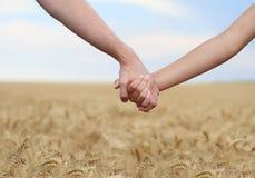 Giovani mani della holding delle coppie nel campo Immagini Stock