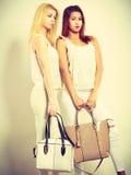 Giovani modelli con le borse Immagini Stock Libere da Diritti