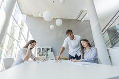 Giovani nell'ufficio fotografia stock libera da diritti
