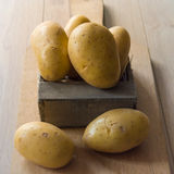 Giovani patate fresche Fotografia Stock Libera da Diritti