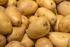 Giovani patate organiche sul mercato Immagine Stock