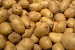 Giovani patate organiche sul mercato Immagine Stock Libera da Diritti