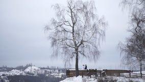 Giovani persone appena sposate che camminano fuori La sposa e lo sposo camminano insieme nel parco nell'inverno o l'estate e tene Fotografia Stock