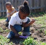 Giovani piantatrici Fotografie Stock