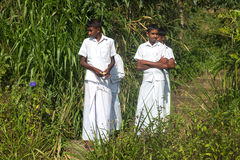 Giovani ragazzi locali sulla piantagione di tè Fotografie Stock