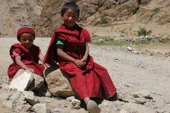 Giovani rane pescarici buddisti Fotografia Stock Libera da Diritti