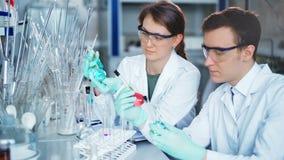 Giovani scienziati che lavorano nel laboratorio biologico moderno stock footage