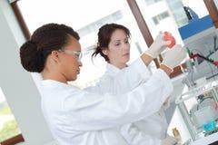 Giovani scienziati femminili concentrati fotografie stock