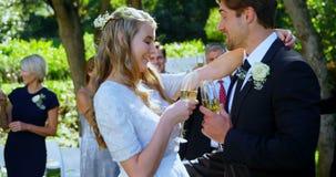 Giovani sposa felice e sposo che tostano con il champagne 4K 4k video d archivio