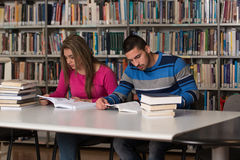 Giovani studenti che lavorano insieme nella biblioteca Immagine Stock