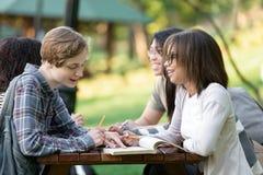 Giovani studenti che si siedono e che studiano all'aperto mentre parlando Fotografie Stock Libere da Diritti