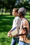 Giovani studenti multietnici che tengono i libri mentre camminando insieme nel parco Immagine Stock