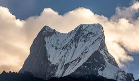 Gipfel des Machapuchare-Fisch-Endstücks gegen die Wolken während der goldenen Stunde, Himalaja lizenzfreie stockfotografie
