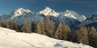 Gipfel im Winter Stockbilder