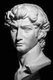 Gipskopf von Michelangelos David Lizenzfreies Stockbild