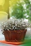 Gipsofila ordning i korg eller träask, på tabellen med Blured trädgårdbakgrund Vår- och sommarblommor tonat vertikalt Fotografering för Bildbyråer