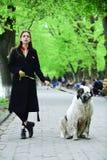 Gir步行狗在春天公园 免版税库存图片