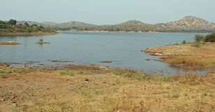 Reservoir at Gir National Park. The Gir Forest National Park and Wildlife Sanctuary also known as Sasan-Gir is a forest and wildlife sanctuary near Talala Gir in Royalty Free Stock Photos