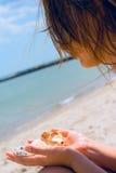 Gir mit Shells Lizenzfreie Stockfotos