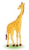Giraf. Royalty-vrije Stock Foto