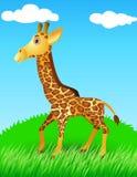 Giraf in de wildernis Royalty-vrije Stock Afbeeldingen
